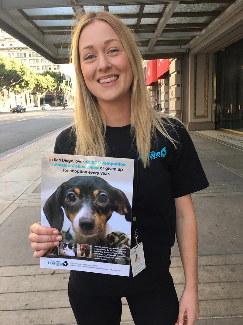 San Diego Humane Society job